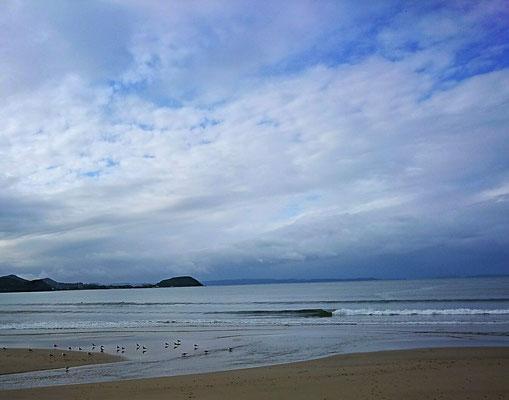 糸島 ビーチ