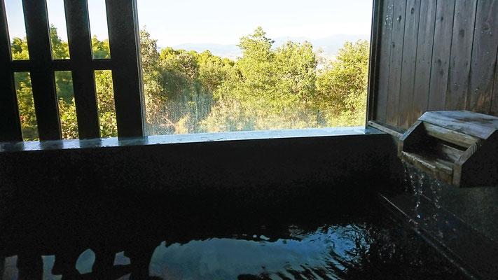 みのう山荘 家族風呂 内湯