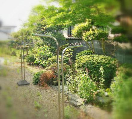 お庭の手入れ Before