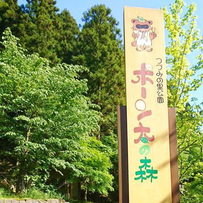 ポーン太の森 キャンプ場
