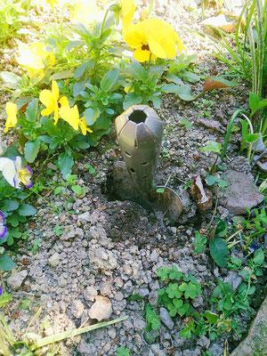 お礼肥え(肥料入れ)の穴