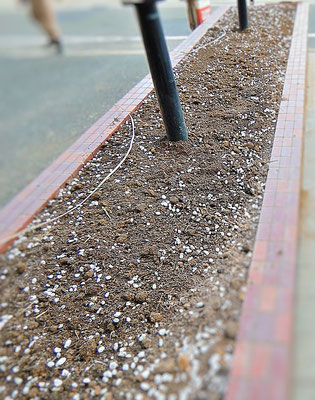 土壌改良剤 スキ込み後