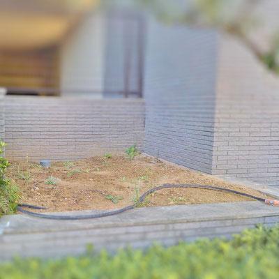 ヤブラン植栽 Before