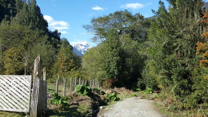 Camino a cascadas doña Tato