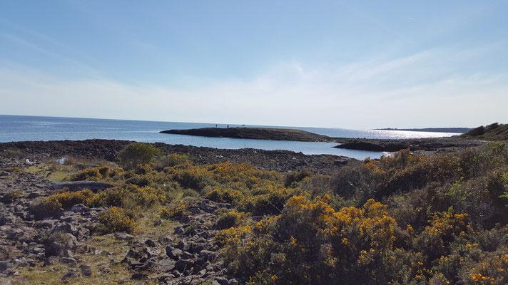 Camino a cuevas del Poe (ruta costera)