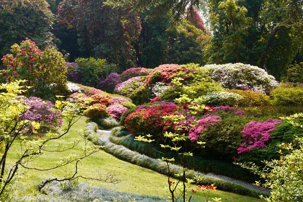 Comersee Garten Villa Carlotta