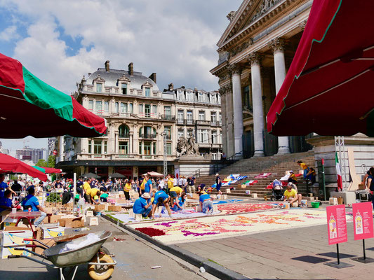 Belgien Brüssel Blumenteppich