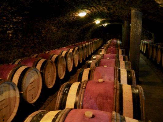 Frankreich Wein Keller im Burgund