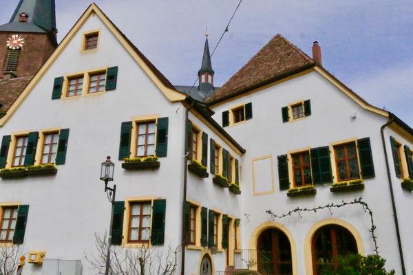 Weinmuseum in Deidesheim  Sehenswürdigkeit Deutschland Mandelblüte Rheinland Pfalz