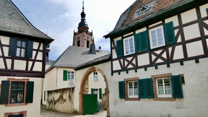Eltville im Rheingau , Wein,Sekt und Rosenstadt