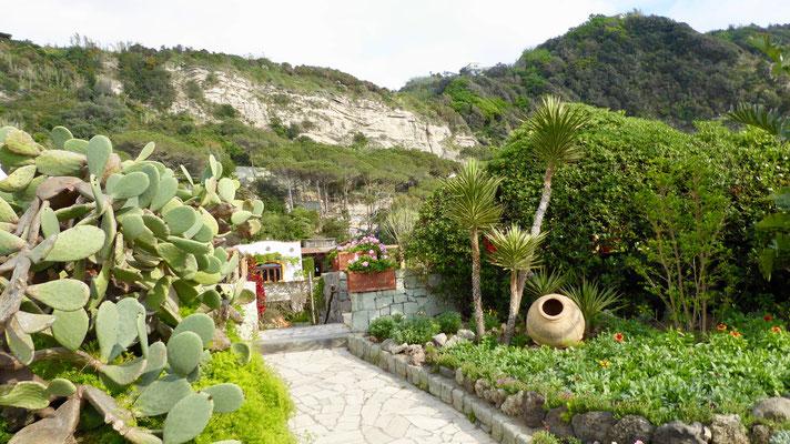 Italien Insel Ischia Poseidon Gärten
