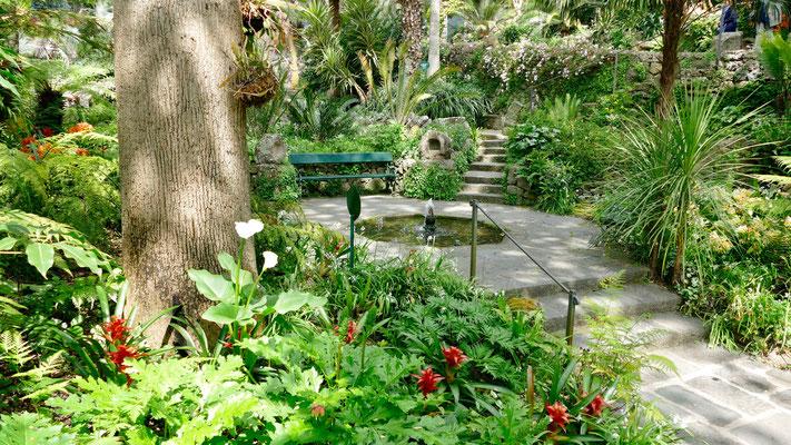 Italien Insel Ischia, Garten Mortela
