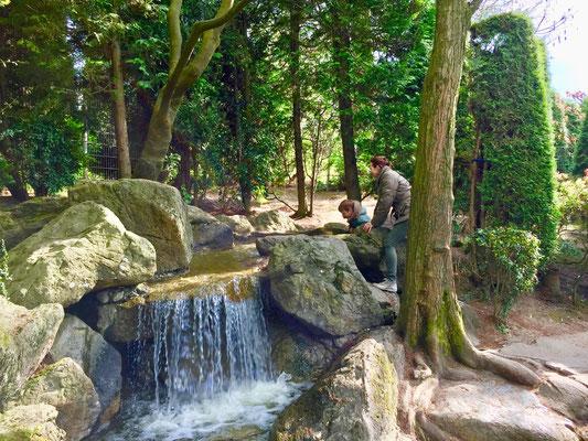 Japanischer Garten Bonn Rheinauenpark
