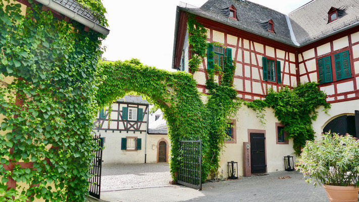 Weingüter Eltville am Rhein, Wein,Sekt und Rosenstadt