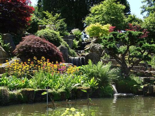 Gartenreise England: Wisley Garden