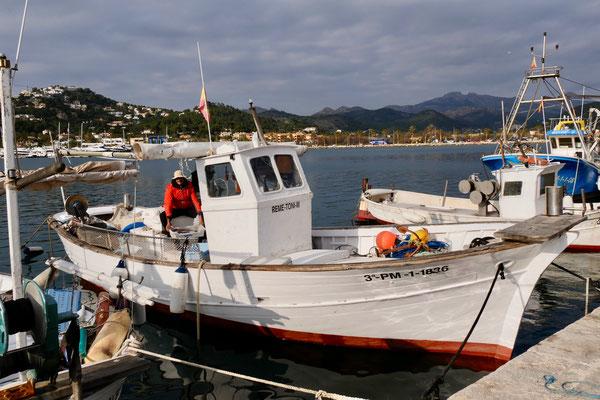Puerto Soller Mallorca Fischer