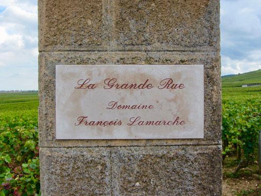 Frankreich Weinberge im Burgund
