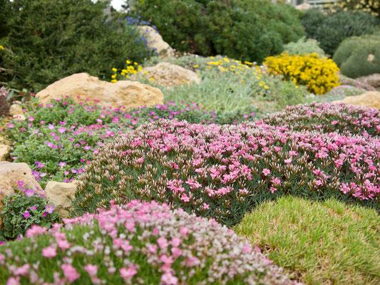 Gartenreise England, Wisley Garden RHS