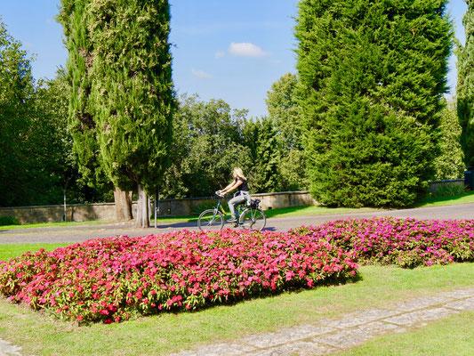Italiens berühmtester Park Sigurta am Gardasee Gardasee, Peschiera, Parco Sigurta
