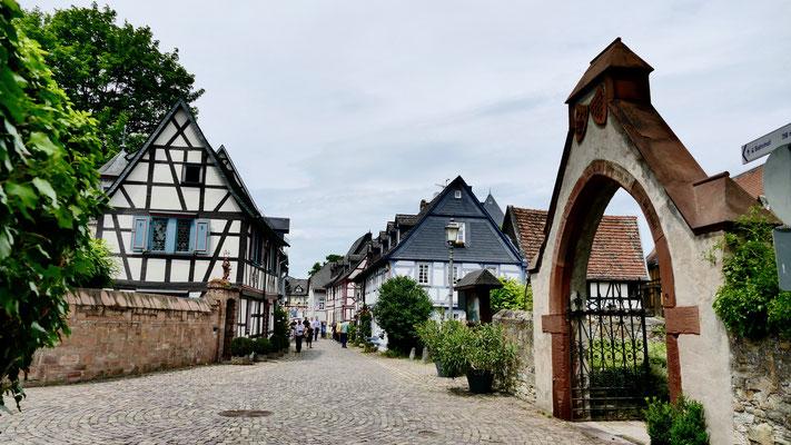 Eltville im Rheingau Wein,Sekt und Rosenstadt