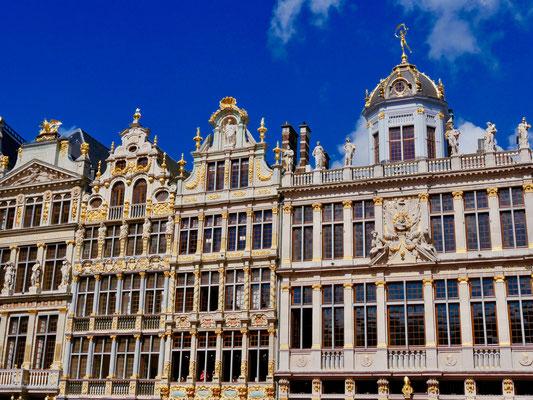 Gildehäuser Zunfthäuser, am Grote Markt  Grande Place Brüssel Belgien