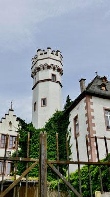 Rüdesheim am Rhein Sehenswürdigkeiten Deutschland