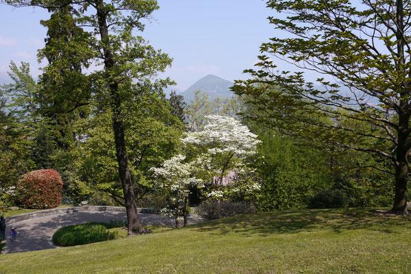 Lago Maggiore Garten Villa Taranto