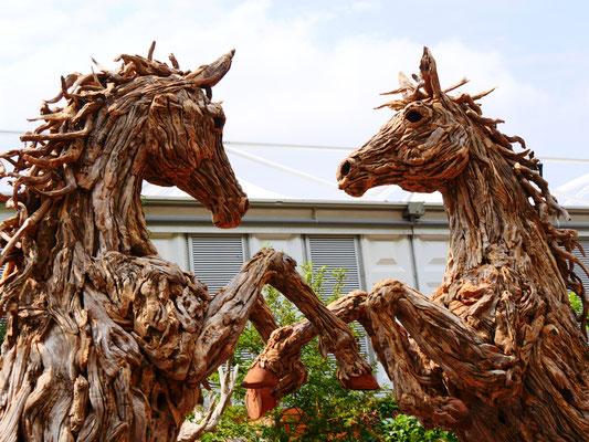 Dekorationen aus Treibholz