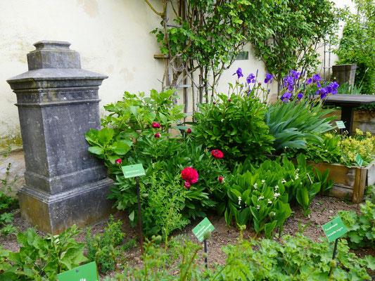 Marksburg Kräutergarten