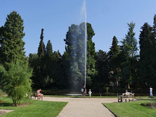 Botanischer Garten der Universität am Poppelsdorfer Schloss Bonn