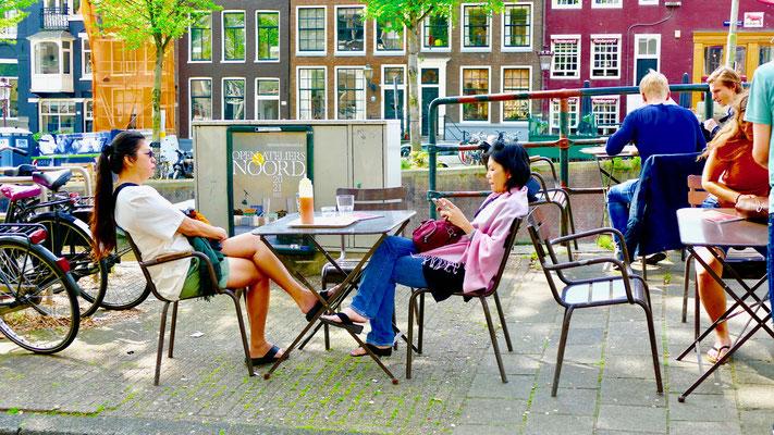 Heiteres Amsterdam Impressionen Sehenswürdigkeiten Amsterdam Holland