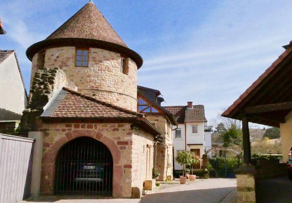 Deidesheim  Sehenswürdigkeit Deutschland Mandelblüte Rheinland Pfalz