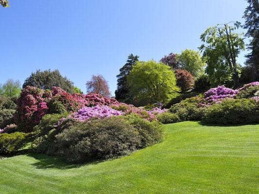 Comersee Garten der Villa Melzi