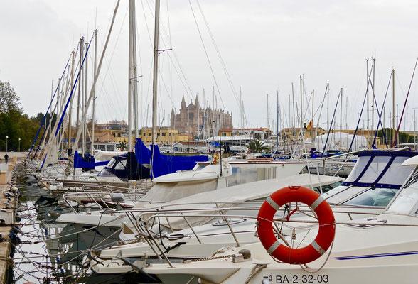 HafenAltstadt Palma de Mallorca