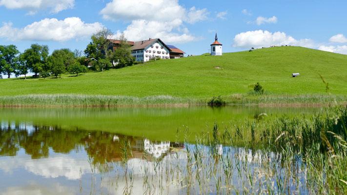 Allgäuer Alpen Füssen am Forggensee