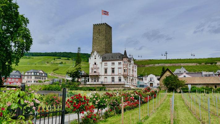Rüdesheim am Rhein,  die Brömserburg Sehenswürdigkeiten Deutschland