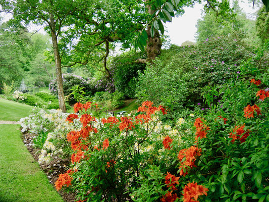 Gartenreise England Sehenswürdigkeiten Pashley Manor Gardens