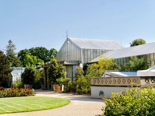 Botanischer Garten der Universität am Poppelsdorfer SchloBotanischer Garten der Universität am Poppelsdorfer Schloss Bonnss