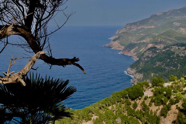 Impressionen Mallorca