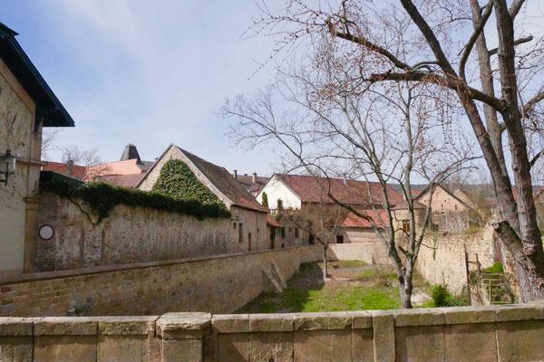 Schloßgraben in Deidesheim Sehenswürdigkeit Deutschland Mandelblüte Rheinland Pfalz