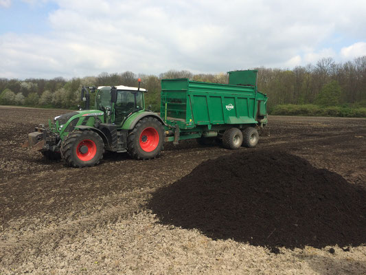 Kompost zur Bodenverbesserung