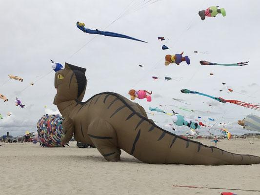 Bild: Drachen Festival in St. Peter-Ording - Foto 3