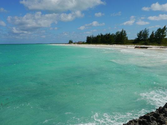 Bild: Karibisches Wasser