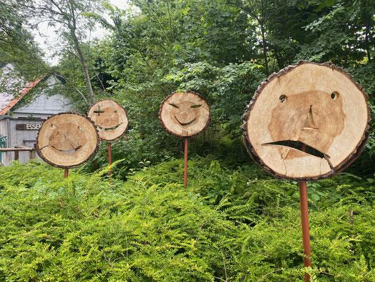 Bild: Baumscheiben