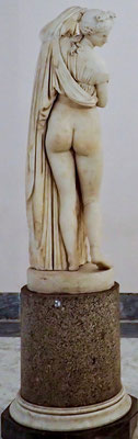 Bild: Die Venus Kallipygus