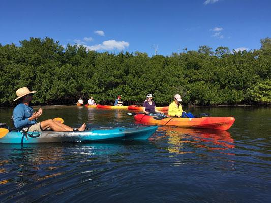 Bild: Die Kayakfahrt geht zurück zur Ausgangsstelle