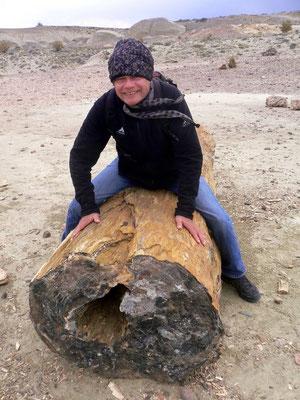 Bild: Ein Ritt auf dem Baumstamm