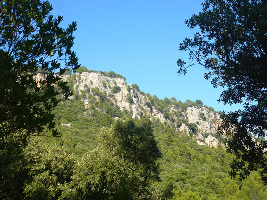 Felsen des Tramuntana Gebirges