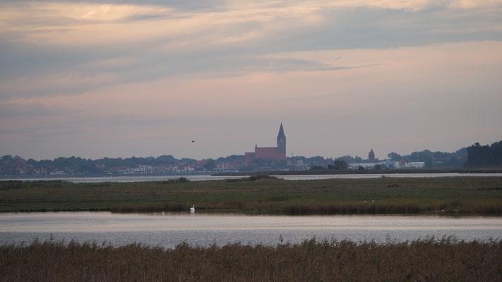 Blick über den Bodden nach Barth mit Kirche