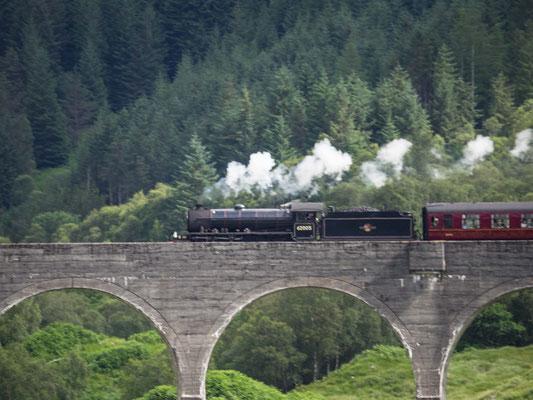 Bild: Das Glenfinnan Viadukt 1